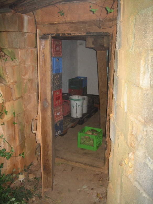 Our root cellar. Credit McCune Porter