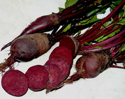 Cylindra Beets. Credit Southern Exposure Seed Exchange