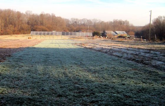 East Garden with frost. Credit Ezra Freeman